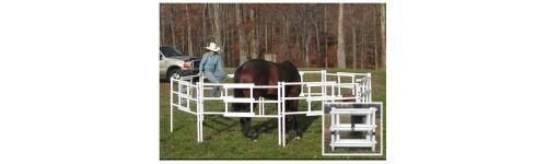 Carri Lite Pony Panels