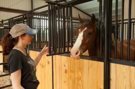 Priefert Horse Stalls