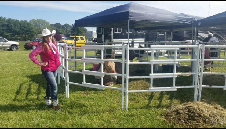 Carri Lite Portable Travel Horse Stall Corral Panels